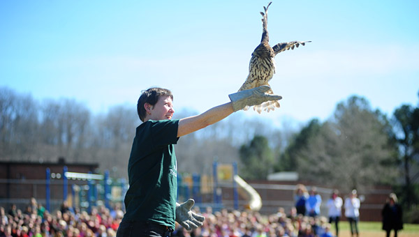 Alabama Wildlife Center's Holly Whitmire prepares to release the hawk on March 8 at OMES. (Reporter Photo/Jon Goering)