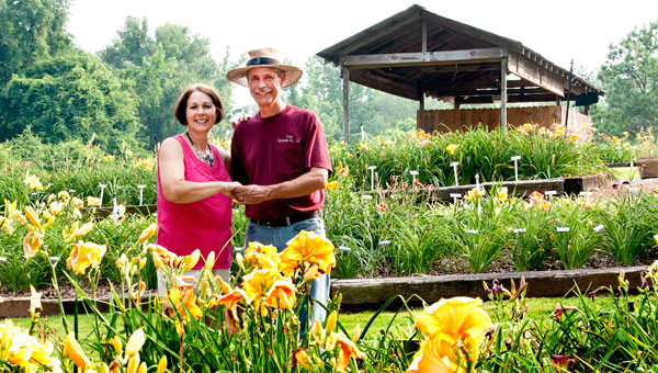 Morris and Becky Parr at Dancing Daylily Garden demonstrate the do-si-do near the flowerbed that contains their namesake daylily. (Contributed)