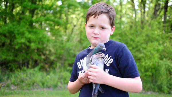 Ryder Cadenhead, who has helped his mom, Angela Shearer-Cadenhead take care of the injured bird, holds it close to where it was found in Columbiana. (Reporter Photo/Jon Goering)