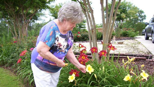 "Although Betty Chesser is unable do much in her flowers now, she still enjoys the beautiful lilies, irises, lantana, ferns, clematis, peonies, hibiscus and hordes of other flowers and shrubs she and family members transferred from her house on the hill in ""old"" Chelsea to her yards at Tara. (contributed)"