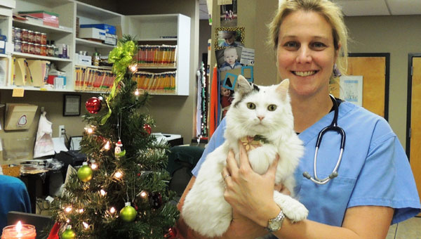 Brooke Jordan, DVM, North Shelby County Animal Hospital, with Oliver, the cat in charge of greeting visitors. (contributed)