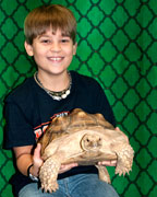 Student Tanner James chose to have his photograph made with the African spurred tortoise during the Barn Hill Preservation visit at HIS. (Contributed)