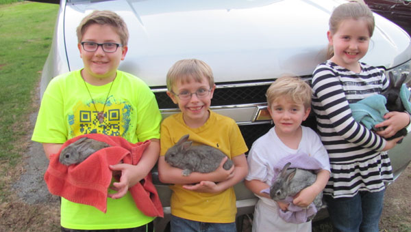 Ben, Jordan, Will and Bethany hold part of the variety of 25 bunnies available in Alabaster. (Contributed)