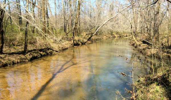 A photograph of creeks running around the site, submitted with the comments by the Southern Environmental Law Center (contributed)