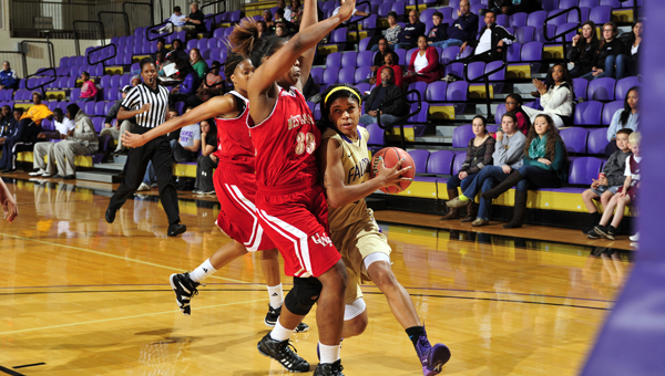 The University of Montevallo women's basketball program will host a summer day camp June 2-5 along with a June Jam camp June 6-7. (Contributed)