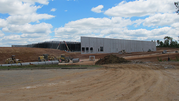 Crews work to construct Hibbett Sports' new distribution facility in Alabaster in May 2013. The facility will open on July 31. (File)