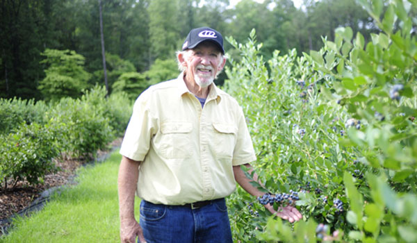 Jim Sutton of Mountain Meadows Farm in Columbiana stand in front of his blueberry bushes. (Reporter Photo/Jon Goering)