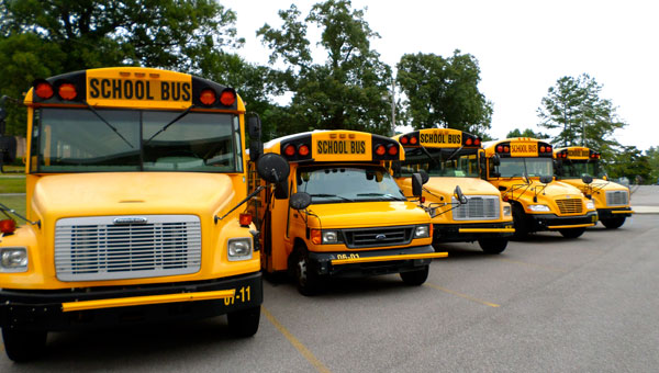 Pelham City School's freshly painted buses sit ready to go at Valley Elementary School. Getting the buses ready is just one of the many important details necessary for the success of PCS. (Reporter Photo / Molly Davidson)