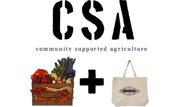 Stone Hollow Farmstead's CSA will begin August 18 and ends November 25. (Contributed)
