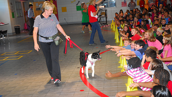 Windy McNish, left, guides Warrior the dog as he visits with Meadow View Elementary School students at the school on Sept. 11. (Reporter Photo/Neal Wagner)