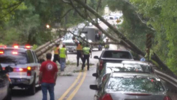 Fallen trees blocked traffic along Highway 52 West near the Cahaba River Bridge in Helena on Oct. 3. (Contributed)