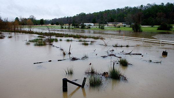 Some areas of Alabaster saw minor flooding during an overnight storm Nov. 16-17, but no major issues were reported. (File)
