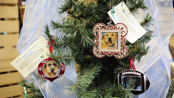 Ornaments from Shelby County Humane Society may be purchased for $60 through Jan. 3 to help a dog in need of a transport to another humane society facility to find a home. (File)