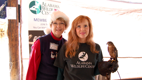 Pam Allen, Stephanie Hill and Arthur, a merlin and one of the AWC's educational birds, at the AWC Holiday Craft and Bake Sale at Veterans Park on Dec. 13. (Reporter Photo / Molly Davidson)
