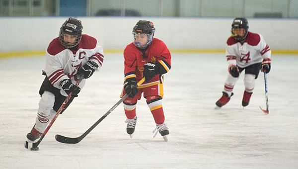 The Junior Frozen Tide, which is based at the Pelham Civic Complex and Ice Arena, recently finished a successful season. (Contributed)
