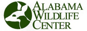 """The Alabama Wildlife Center will be hosting its annual fundraiser """"Wild about Chocolate"""" Saturday, Feb. 15."""