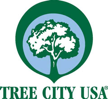 The Shelby County Office of the Alabama Forestry Commission will be holding a tree seedling give-away on Saturday, Feb. 28.(Contributed)