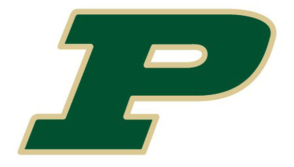 The Pelham Panthers defeated the Helena Huskies 2-0 on Friday, March 6, behind strong pitching from starter Connor Radcliff. (File)