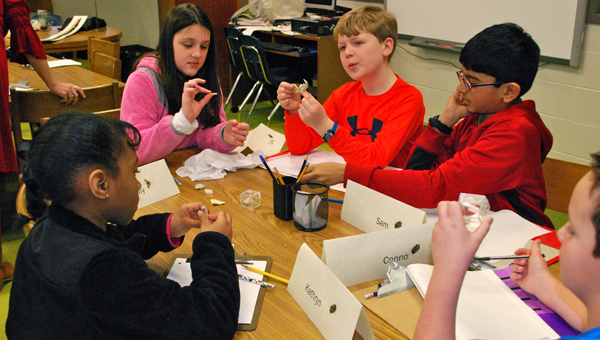 OMIS students observe and collaborate during a March 2 workshop led by naturalist, scientist and author, Heather Montgomery. (Reporter Photo / Molly Davidson)