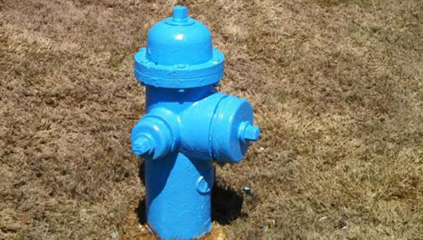 Certain fire hydrants around the city of Helena are painted blue in support of Autism Awareness Month for the month of April. (Contributed)