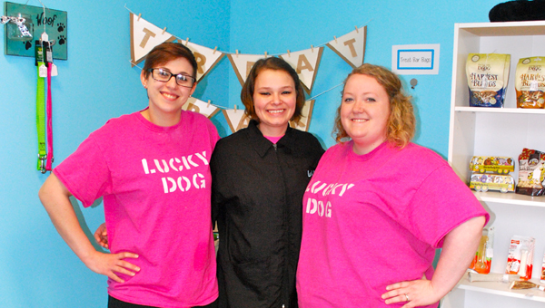 The Lucky Dog Grooming and Boutique Team, Alyssa Hall, Shannon Veitch and Magan Hall stand in their Mt Laurel shop. (Reporter Photo / Molly Davidson)
