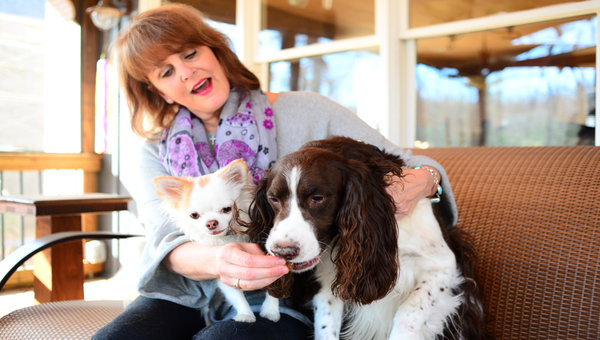 PowerBark co-owner Beth Arnold says her family and dogs, Louie and Riley, love living in Hoover.