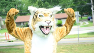 Noah Reece gets into character as Wiley, the Shelby County High School mascot, a role he has had all through high school. (Reporter Photo / Baker Ellis)