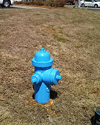 The Helena Fire Departments will be conducting annual fire hydrant maintenance through August. (File)