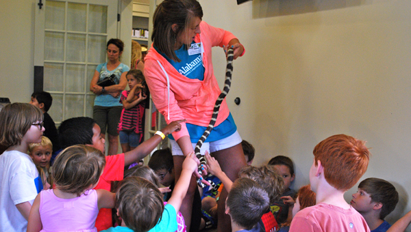 Kids reach out to touch Fluffy the king snake during an Animal Super Powers presentation led by the Alabama 4-H Center at the Mt Laurel Library. (Reporter Photo / Molly Davidson)