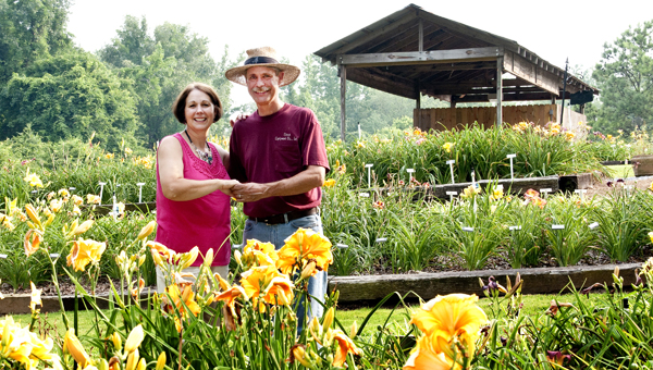 Morris and Becky Parr are shown here in a photo taken exactly three years ago. Dancing Daylily Garden, at 4353 South Shades Crest, is open from 8 a.m.–2 p.m., remaining Saturdays in June and by appointment, at Dancingdaylily.com. (Contributed)