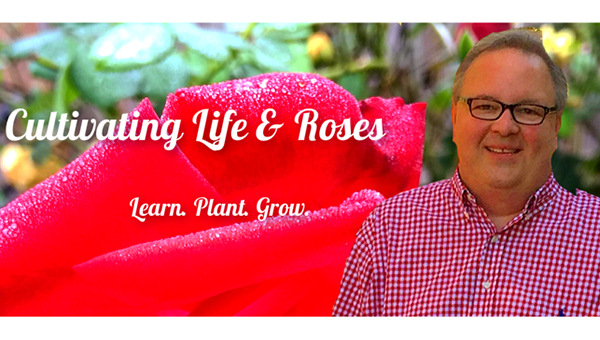 Helena's Chris VanCleave and self-proclaimed Redneck Rosarian gave five helpful tips for growing healthy roses. VanCleave is the chairman of the Helena Beautification Board. (Contributed)
