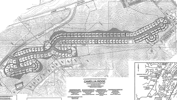 The preliminary plat for Camellia Ridge off Bearden Road, proposes a 126-lot community of garden homes ranging from the $200,000s to the $300,000s, depending on the lot size. (Contributed)
