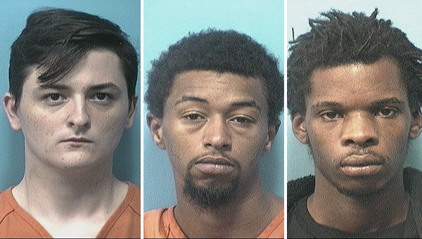 Erin Elizabeth Riley (no booking photo available) Devin Sandlin, William Alexander Smith and Marques Edward Tetter were arrested for breaking and entering vehicles.