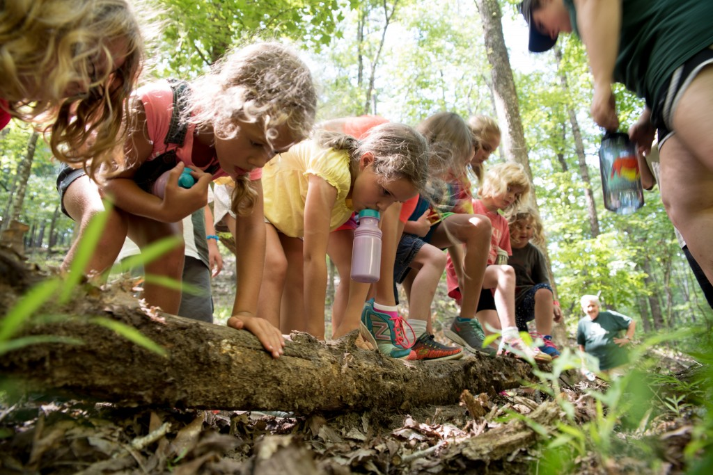 Kids at the AWC Back to School camp search for bugs under logs. (Reporter photo/Keith McCoy)