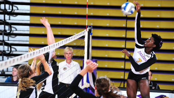 Manyi Ati, former University of Montevallo volleyball standout, has signed a contract with Svelda Volley, a professional team based in Sweden. (Contributed)
