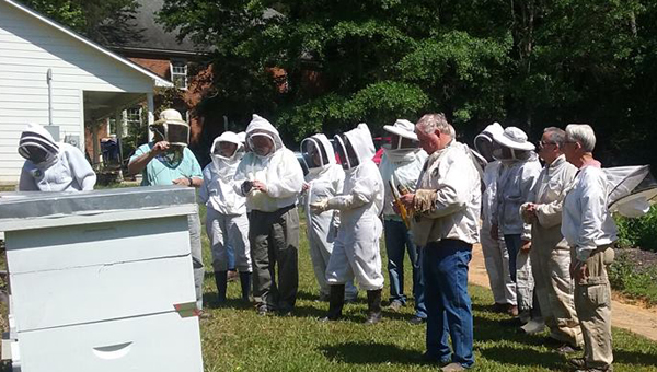 The Shelby County Beekeepers Association will hold an event specifically for Veterans at Hargis Retreat in Chelsea. The event is meant to teach veterans how to take up the hobby of keeping bees and treat them with care. (Contributed photo)