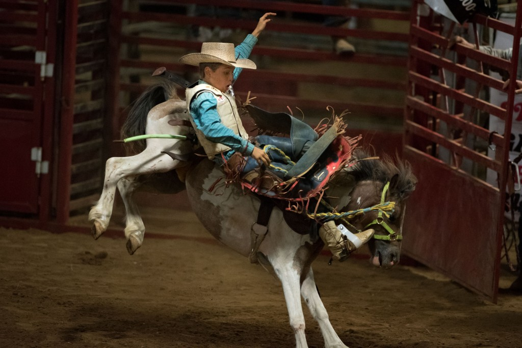 A rodeo participant battles a bronco at the Police Lives Matter rodeo on Aug. 27. (Reporter photo/Keith McCoy)