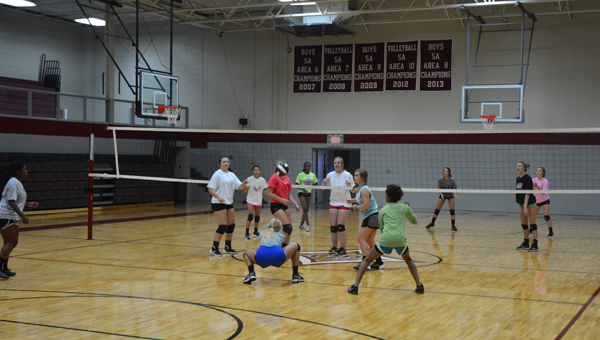 The Shelby County Wildcat's volleyball team prepares for their season as they look to make it back to the playoffs and compete for a state championship. (Reporter photo/Alec Etheredge)