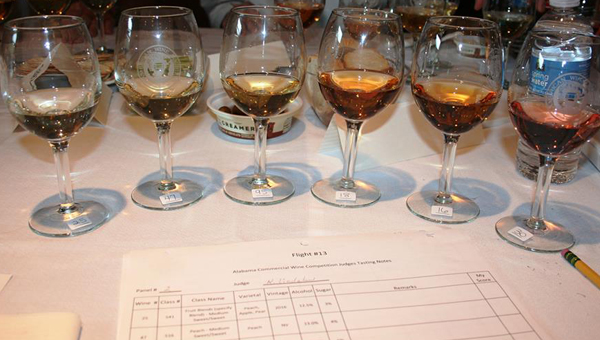 A flight of wines form last years Alabama Commercial Wine Competition. The wines are judged blindly on smell, taste, finish and overall appearance of the wine. (Contributed)