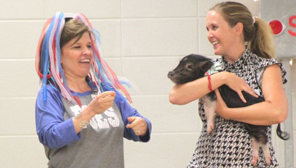 Forest Oaks Elementary School Principal Sasha Baker prepares to kiss a pig after she made a deal with students promising to do so if they raised $15,000 during the schools first ever coin drive. (Contributed)